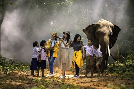 Japanese tourists and Thai tour guides are watching elephants in the jungle. Lost tourist asking for help from a local people in the forest.