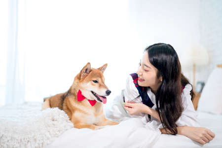 Woman and dog Shiba Inu in a white bedroom. Japanese Dog. Stock Photo