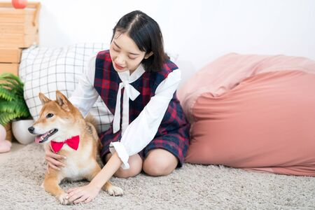 Pet Lover concept. A girl or young woman with a Shiba Inu dog on a sofa in a white Japanese-style living room. Imagens