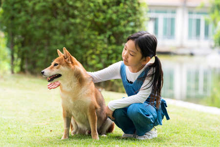 An Asian girl is playing with a dog in the park. Girl and Shiba inu dog. 免版税图像 - 151137703