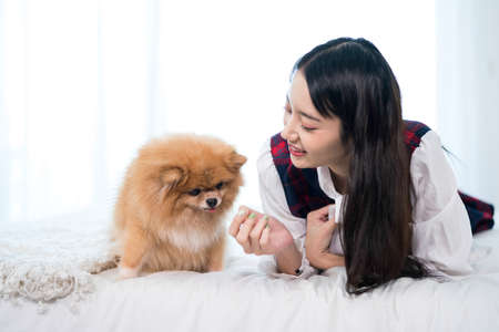 Young woman playing with Shiba Inu in her bedroom. Stockfoto