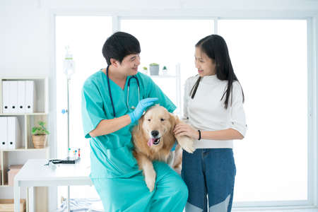 Veterinarians are talking about canine health in animal hospitals.