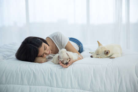 A girl lying in a room with a white Shiba inu dogs and maltese dog. Stockfoto - 154881169