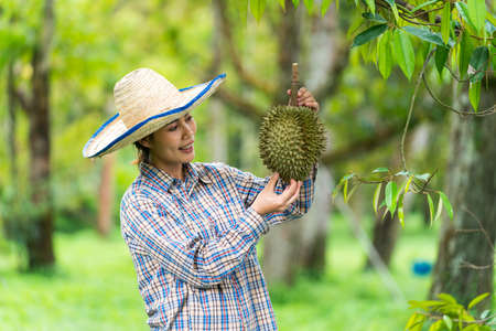 Durian farmers are showing their durian fruit. Farmers are holding durian fruit. Stockfoto