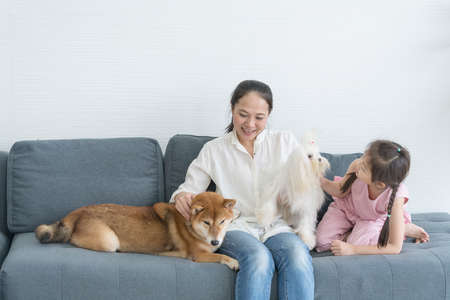 A mother and daughter sitting on the sofa in the living room with a Shiba Inu dog. And Maltese dog.