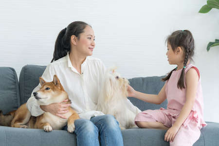 An Asian girl and her mother sit on the sofa in the living room with a Shiba Inu and Maltese. Morning sunshine with mom and baby and her dog