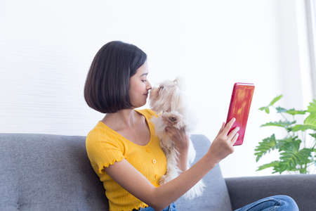 A young Asian woman kissing a maltese dog on her tablet phone. Stockfoto
