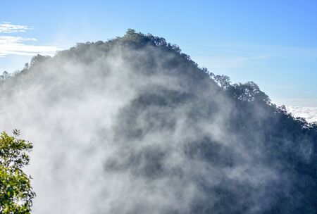 Lingering fluffy mist in highland valley of northern Thailand.