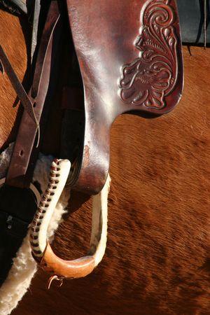 ranching: Brown Horse Stirrup Close Up