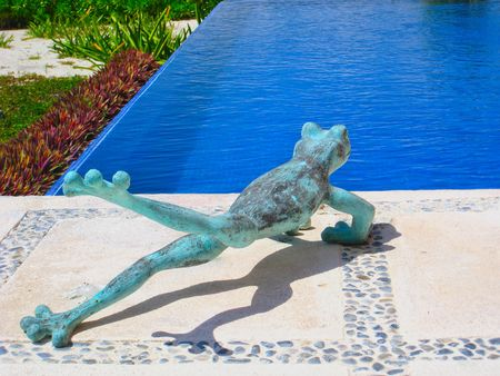 Humorous frog ready to take a leap into a pool