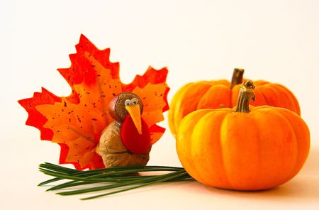 tiny turkey and 2 mini pumpkins photo