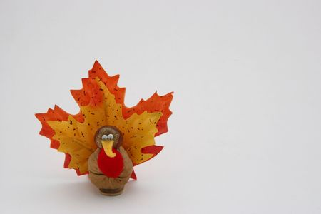 caruncle: A hand crafted nutty tiny turkey. Could be used as a Happy Thanksgiving greeting card. Also possible use for Halloween. Stock Photo