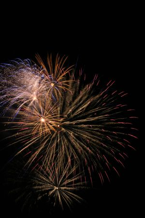 Fireworks display. New Years's Eve, 4th of July or any type of celebration.