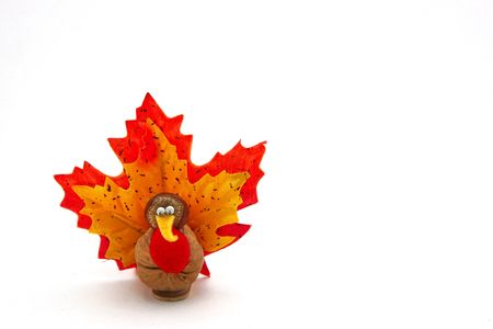 thanksgiving greeting: A hand crafted nutty tiny turkey. Could be used as a Happy Thanksgiving greeting card. Also possible use for Halloween. Stock Photo