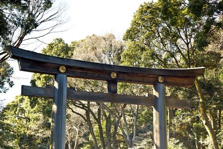 harajuku: yoyogi park and arch. Harajuku tokyo