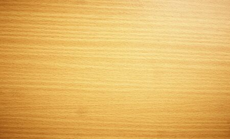wood panel background: wooden Texture