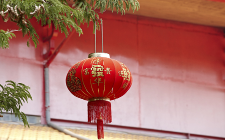 means: Chinese lantern decoration on the tree, Chinese means good luck