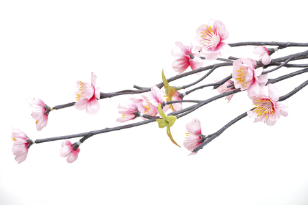 white blossom: Pink Cherry blossom, sakura flowers isolated on white background, fake?Flowers made from fabric Stock Photo