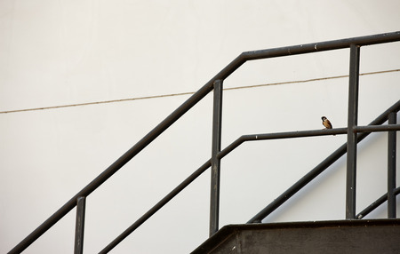 fire escape: Metal fire escape or emergency exit on Grey Wall of Building Stock Photo