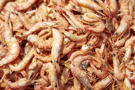 thinness: Close up of sun rdied seafood, traditional preserved food: Dried Shrimps for making Asian cuisines Stock Photo