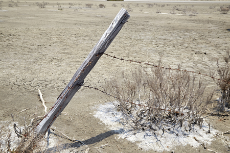 cattle wire: Fence made of poles with barbed wire
