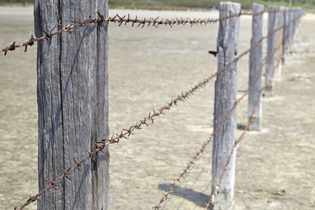 cattle wires: Fence made of poles with barbed wire