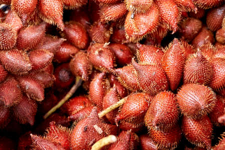 salak: Red Fruit Salacca, Red Fresh Salacca, Salak Bali, zalacca Stock Photo