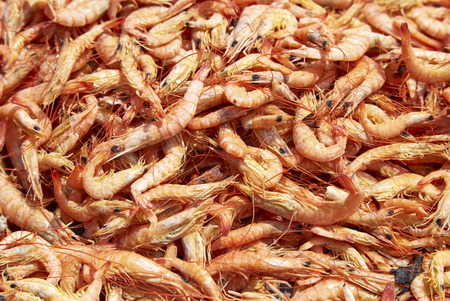 cuisines: Close up of sun rdied seafood, traditional preserved food: Dried Shrimps for making Asian cuisines Stock Photo