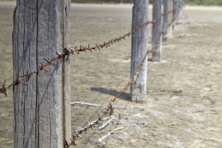 cattle wire wires: Fence made of poles with barbed wire