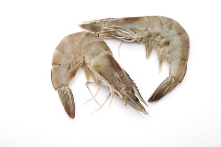 raw: Raw shrimps