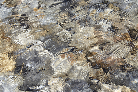rocks water: Clear Lake really is clear! This is a shot of the lake bottom. Stock Photo
