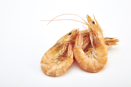 Prawn isolated on white background.