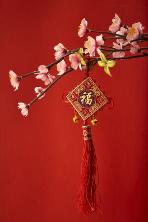 Chinese new years decoration for Spring festival Stock Photo