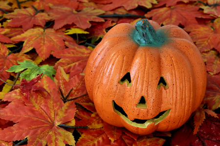 Happy Halloween pumpkin head on leaves white background