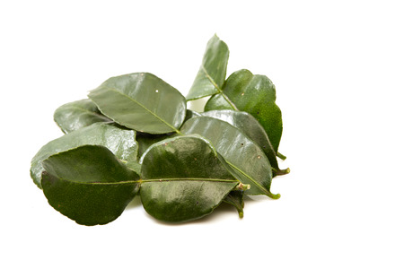close up of  kaffir lime leaves on white background. flat lay concept Stock Photo