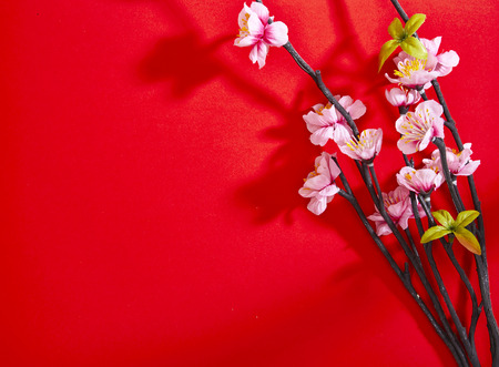 chinese new year decorations, Plum blossom on red paper top view with copyspace 스톡 콘텐츠