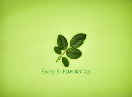 st patricks day leaf, leaves, rose, on green  background Stock Photo