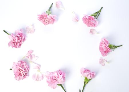 Roze anjersbloem voor Moederdag op witte achtergrond