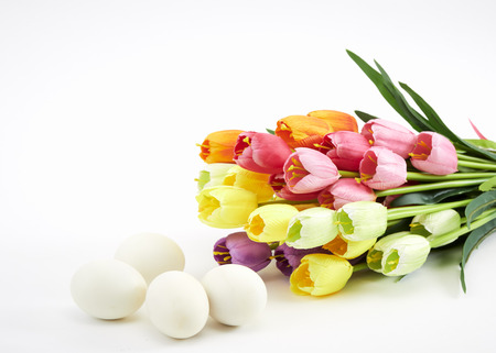 Easter eggs with tulips on White , easter holiday concept. Copyspace for text. Stock Photo