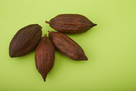 four cocoa pod on green background, Food industry