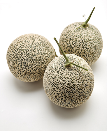 Three fresh cantaloupe melons on white background, Space for design