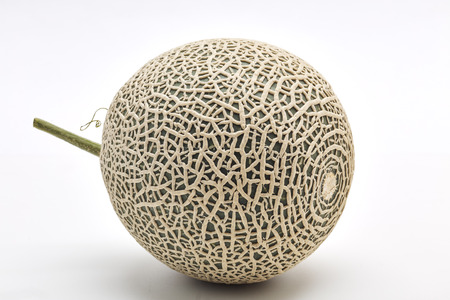 Single fresh cantaloupe melon on white background, Space for design Standard-Bild
