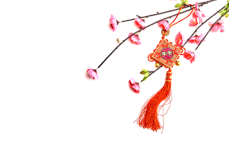 Plum Pink Cherry Branch with Chinese Lucky Knot on white background Chinese New Year decorations (English translation for foreign text means blessing)