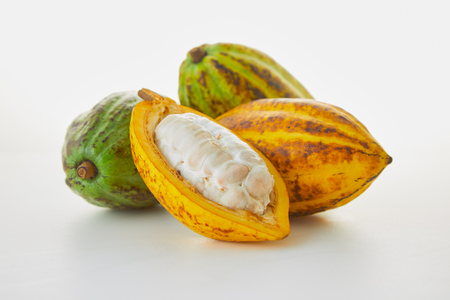 Fresh cocoa fruits with green leaf on white background