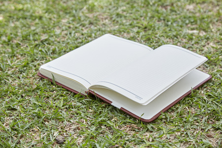 Empty page of kraft paper notebook on the texture on green grass