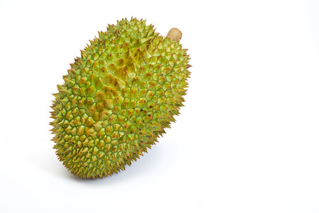 Green tropical fruit durian on white background. Exotic fruit durian studio photo. Thailand delicatessen. Spiky peel and sweet flesh of tropical fruit. Thai sweet food Imagens