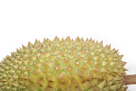 Close-up view of Kanyao Durian on white background Imagens