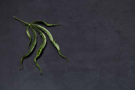 leaves Medical marijuana cannabis cbd oil on black concrete background