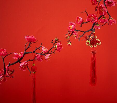 Decoration Red Sakura Tree Branches Traditional chinese knot. Chinese 2020 New Year Asian Lantern Flowers on red background. Place for your Text banner. Archivio Fotografico - 134344414