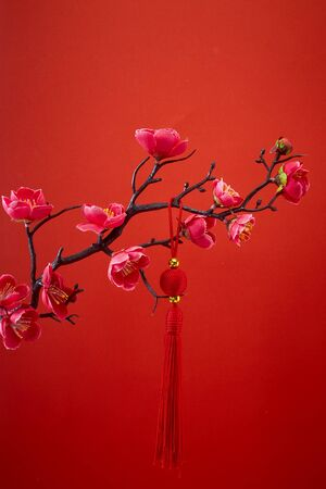 Decoration Red Sakura Tree Branches Traditional chinese knot. Chinese 2020 New Year Asian Lantern Flowers on red background. Place for your Text banner.